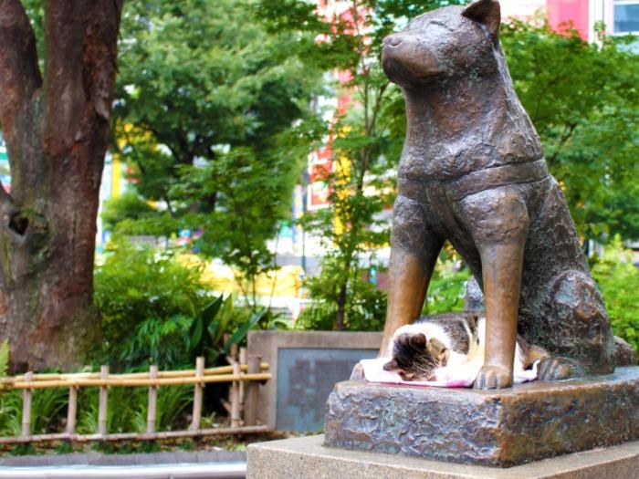 渋谷駅前のハチ公