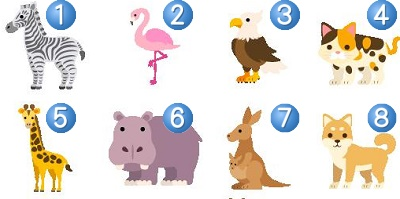 動物コンテスト